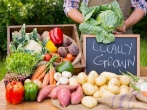 sistem pangan lokal